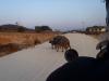 around Phonsavan