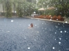 Swimming in the rain - Phuket