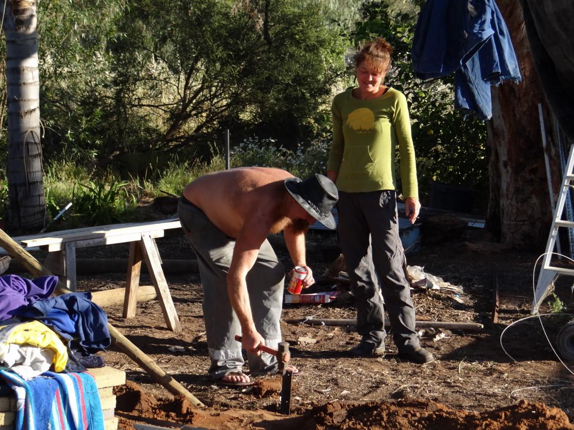 chook yard project