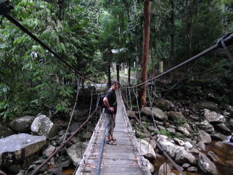 "bridge over the waterfall pool,""Gunung Stong\"""
