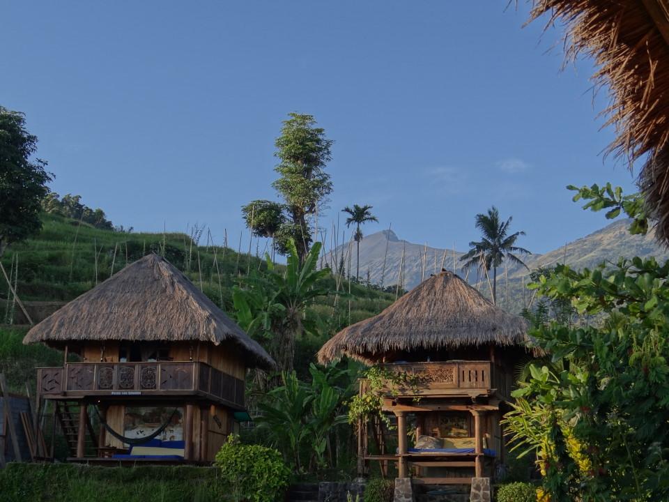 Lombok, Rinjani Mountain Garden