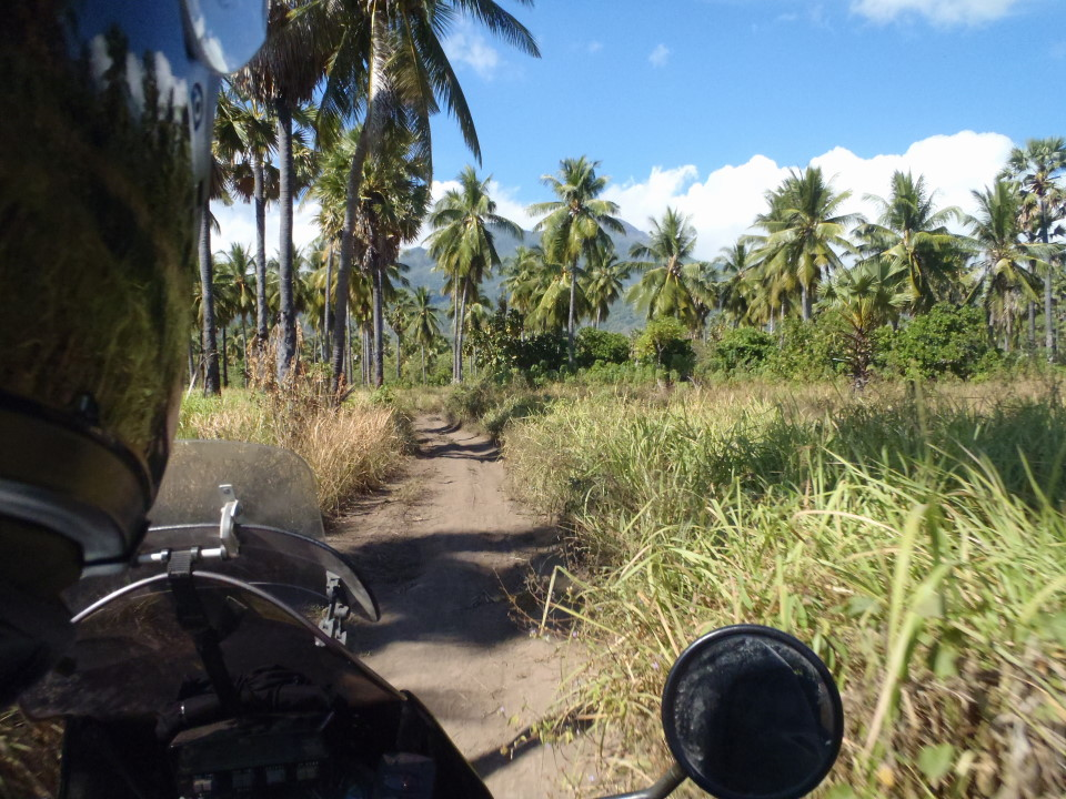 "Flores - Maumere east, ""road to our bamboo\"""