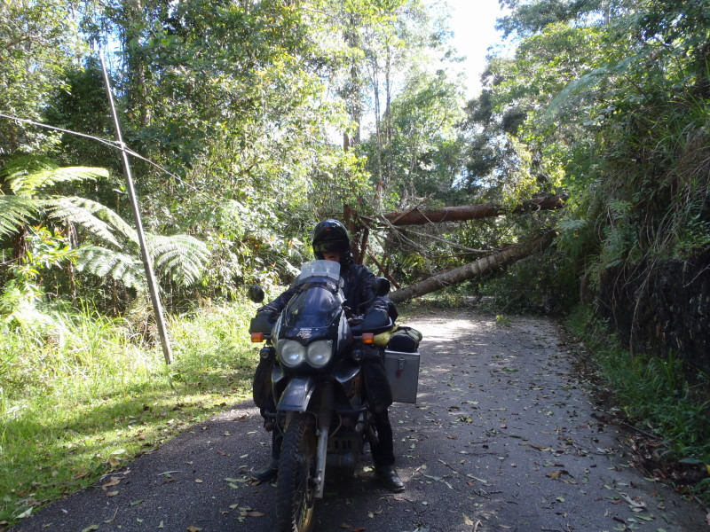 blocked road to the camp ground