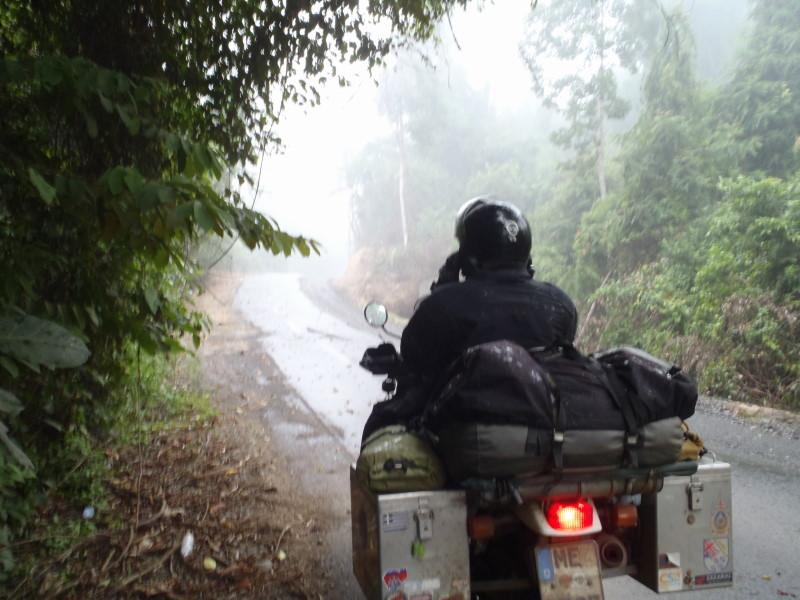 heavy rain shower in the jungle