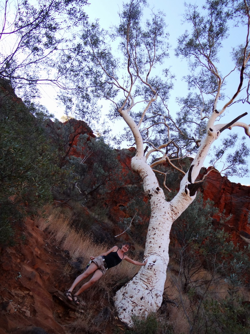 ups, too strong, Dales Gorge,  Karijini