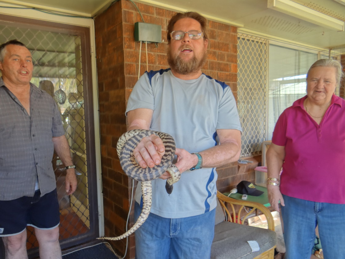 Snake lesson with Jim, Wayne and Dot, Tom Price