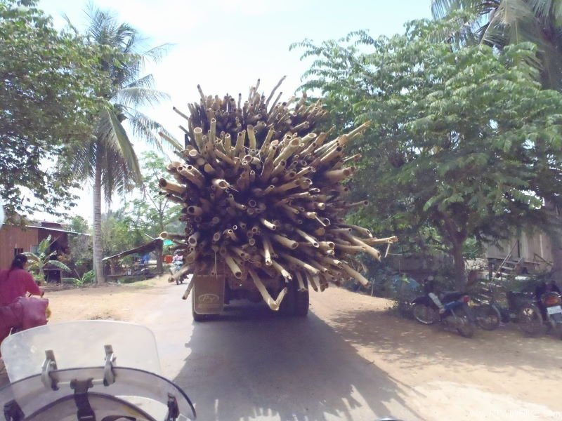 loaded sugar cane truck