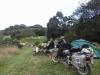 lastdaysinnz0066
