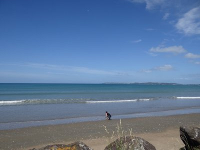 Te Arai Point beach