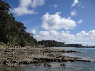 Mahurangi, exploring the little island