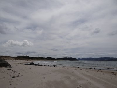 Tawharanui Regional Park. beach