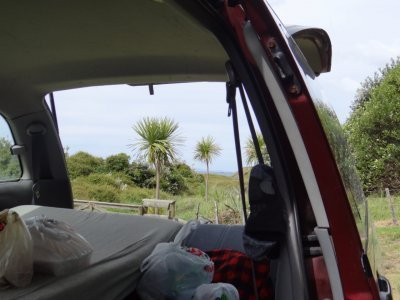 Tawharanui Regional Park, camp site with view to the beach