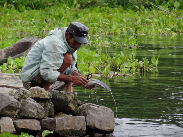 fishing man, on Samosia isle, Danau Toba, Sumatra