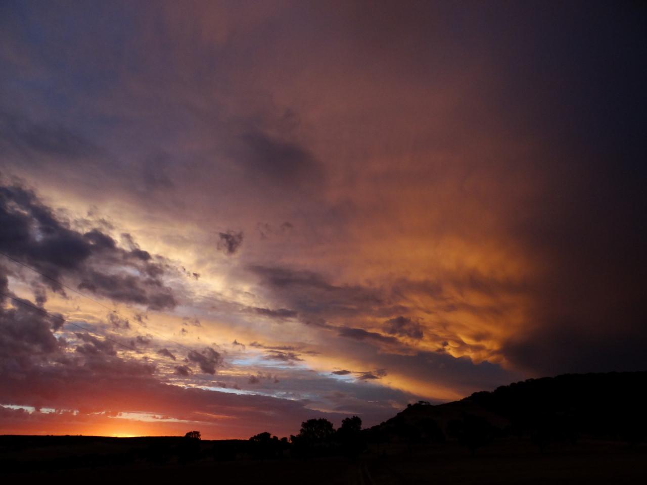 sunset spirit on the farm