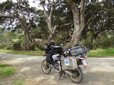 Coromandel - getting north