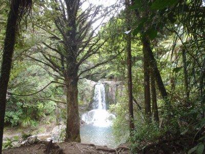 Waiau fall