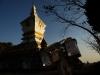 Phongsali shares borders with Yunnan (China) and Dien Bien (Vietnam)