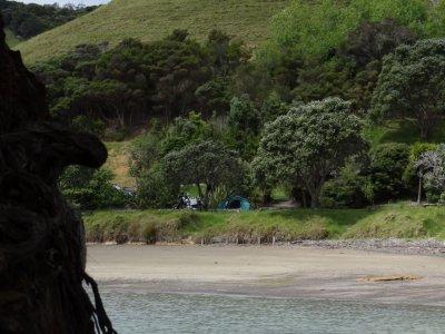 Whangaruru, camp